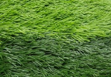 cỏ nhân tạo sân bóng vtn 38D