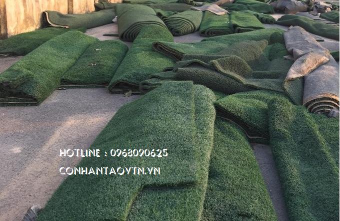 cỏ nhân tạo cũ đã qua sử dụng