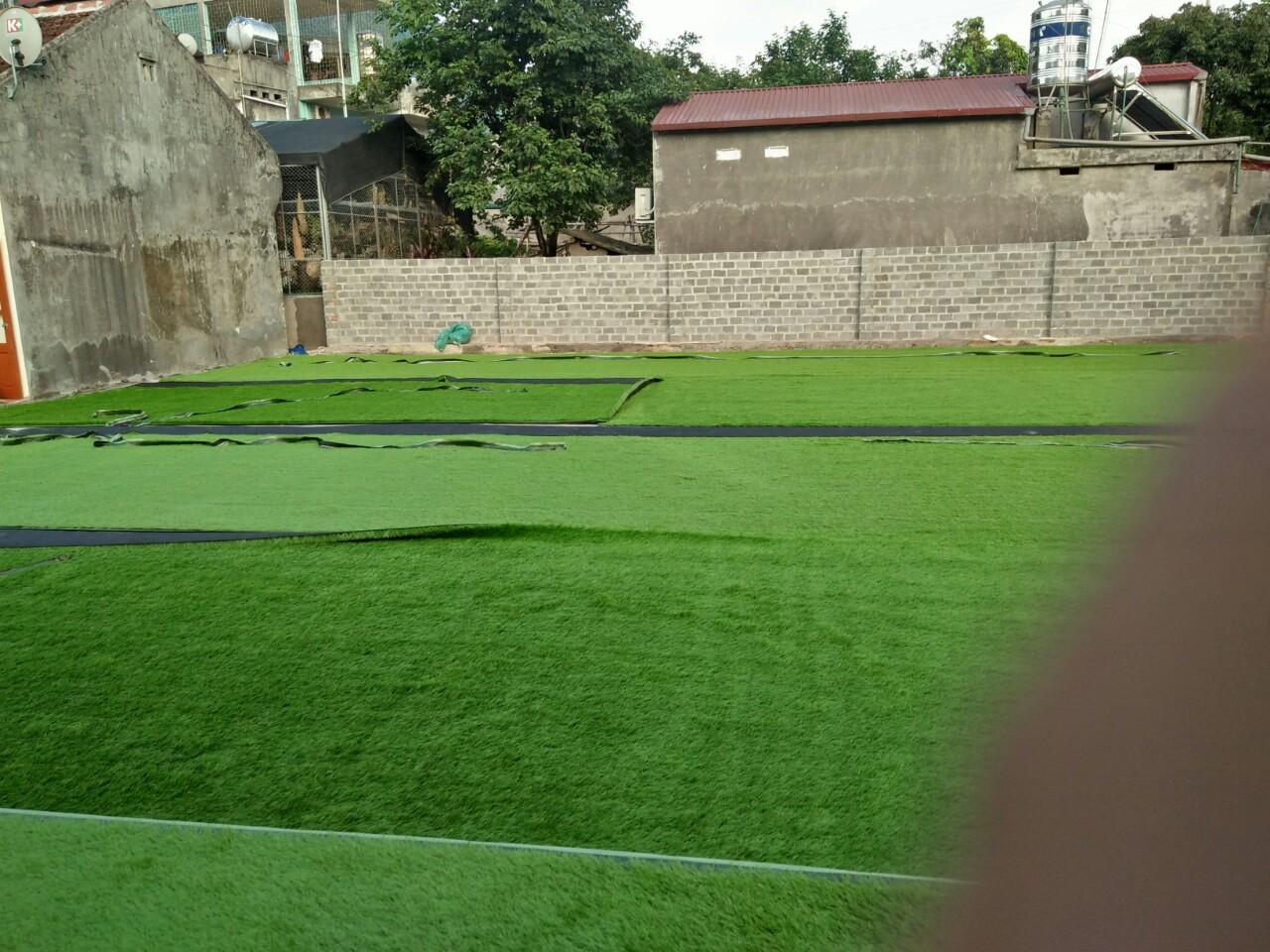 cỏ nhân tạo sân bóng vtn 18D12000