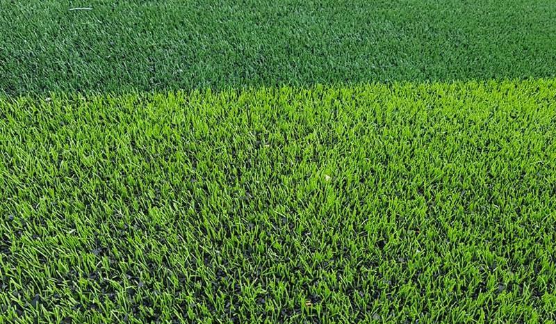 cỏ nhân tạo bắc giang