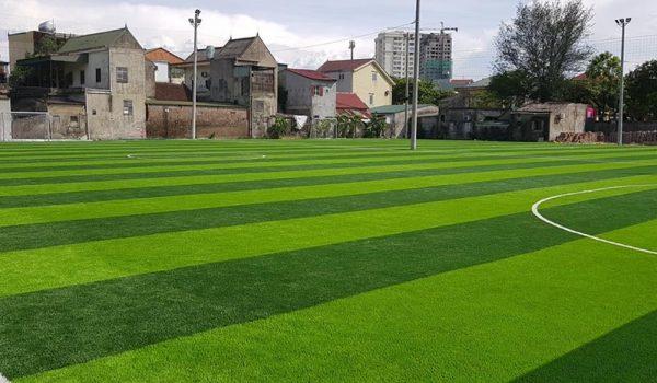 cỏ nhân tạo nam định