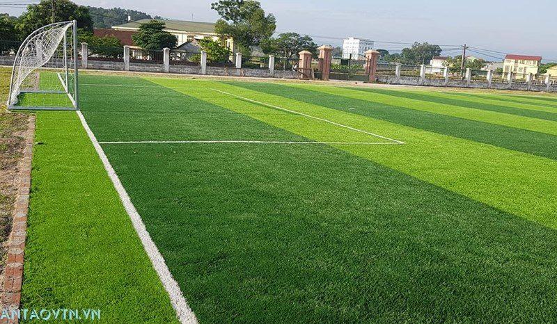 cỏ nhân tạo hải phòng