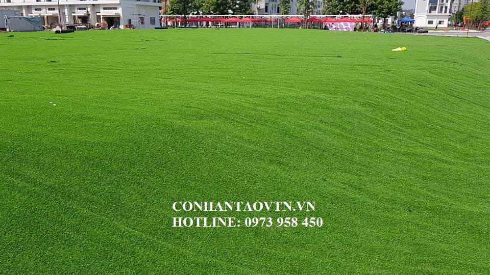 cỏ nhân tạo phú thọ