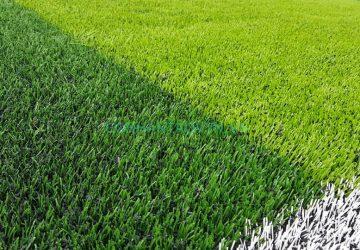 cỏ nhân tạo vĩnh phúc