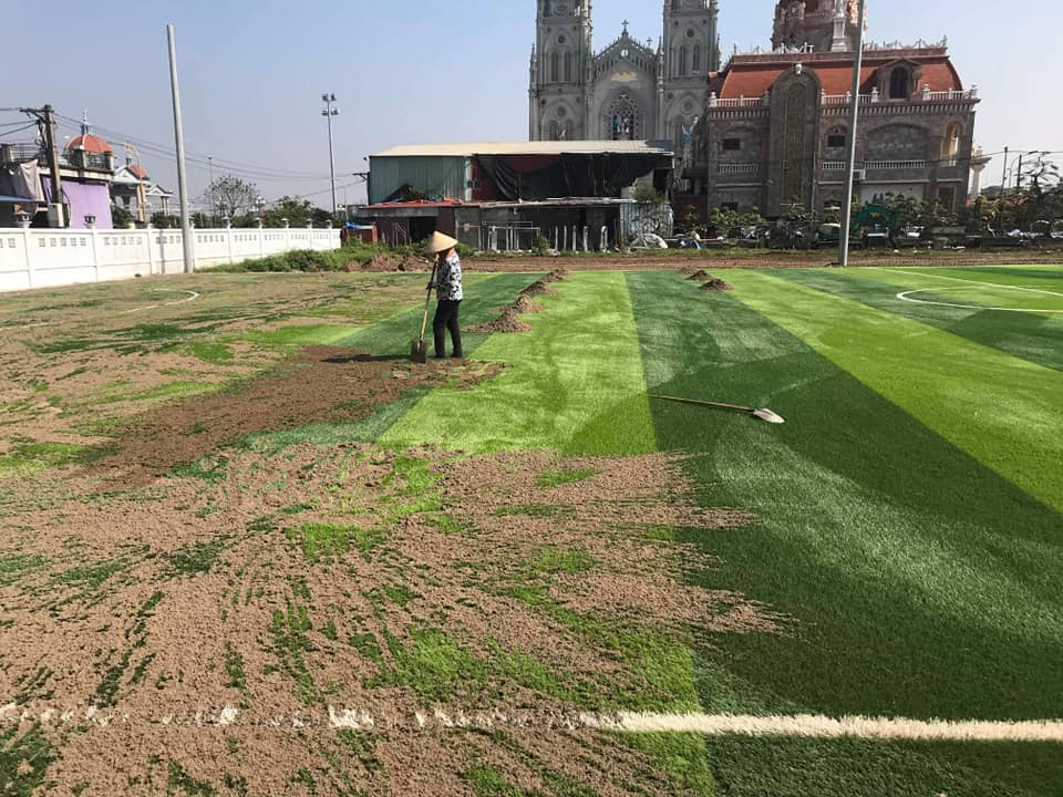 cỏ nhân tạo sân bóng nam định
