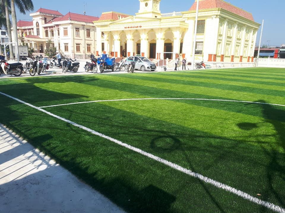 cỏ sân bóng nam định