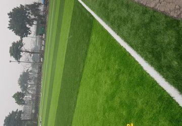 cỏ nhân tạo hà nội