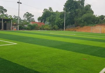 cỏ nhân tạo sân bóng